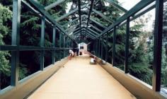 ponte-verde1